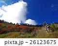 青空 青い空 ブルースカイの写真 26123675