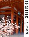 平安神宮、外拝殿の朱塗りの柱に満開の桜のような結び木の桜みくじ 26136342
