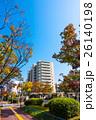 街路樹 マンション 紅葉の写真 26140198