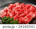 霜降り和牛バラ肉スライス皿盛り 26160341