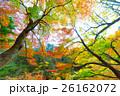 【紅葉】秋 イメージ【紅葉】秋 イメージ 26162072