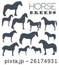 Horse breeding icon set. Farm animal. Flat design 26174931