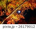 月 満月 月明かりの写真 26179012
