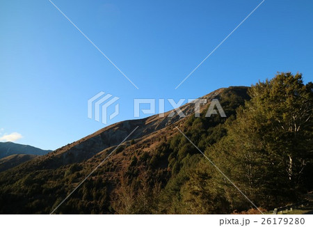 ニュージーランド ネルソンレイクス国立公園 26179280