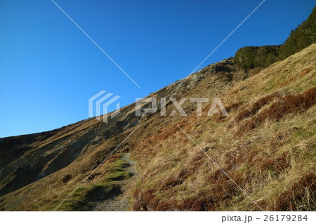 ニュージーランド ネルソンレイクス国立公園 26179284