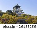 秋の大阪城 26185256