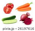 Realistic Vegetables Set 26197616