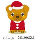 トイプードル 犬 クリスマスのイラスト 26199828