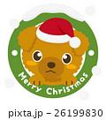 トイプードル 犬 クリスマスのイラスト 26199830
