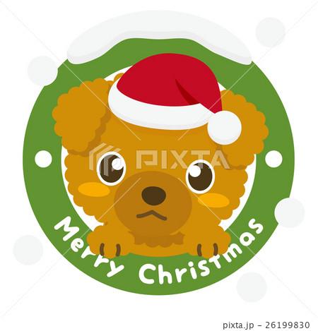 いぬっこ倶楽部 クリスマス トイプードル 26199830