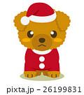 トイプードル 犬 クリスマスのイラスト 26199831