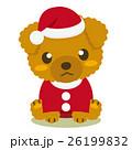 トイプードル 犬 クリスマスのイラスト 26199832