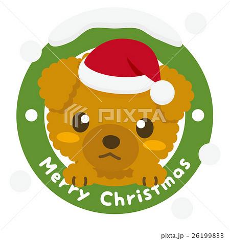 いぬっこ倶楽部 クリスマス トイプードル 26199833