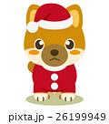 柴犬 犬 クリスマスのイラスト 26199949