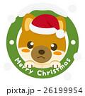 柴犬 犬 クリスマスのイラスト 26199954