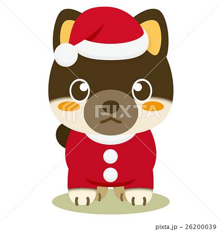 いぬっこ倶楽部 クリスマス 柴犬(黒) 26200039