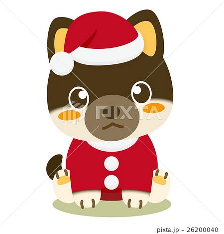 いぬっこ倶楽部 クリスマス 柴犬(黒) 26200040