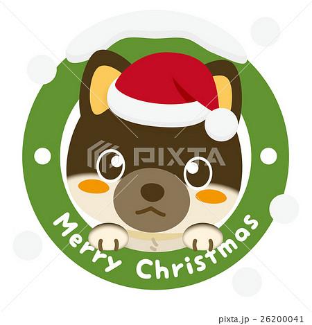 いぬっこ倶楽部 クリスマス 柴犬(黒) 26200041