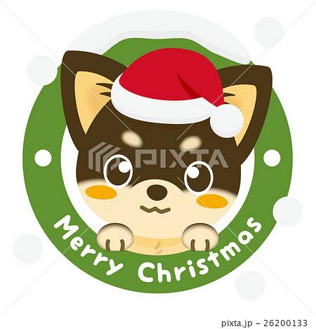 いぬっこ倶楽部 クリスマス チワワ(黒) 26200133