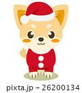チワワ 犬 クリスマスのイラスト 26200134