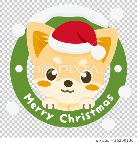 いぬっこ倶楽部 クリスマス チワワ(クリーム) 26200136