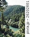 トレイルラン 26202601