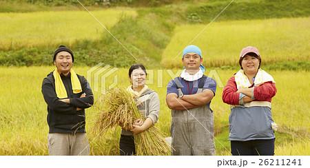 お米の収穫 ポートレート 26211241