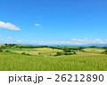 北海道 爽やかな夏の美瑛 26212890