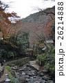 秋の箕面山 26214888