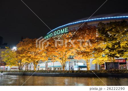 東京ドーム前銀杏並木ライトアップ 26222290