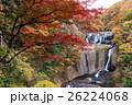 袋田の滝の紅葉 26224068