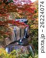 袋田の滝の紅葉 26224074