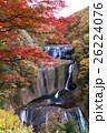 袋田の滝の紅葉 26224076