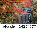 袋田の滝の紅葉 26224077