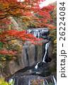 袋田の滝の紅葉 26224084