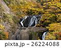 袋田の滝の紅葉 26224088