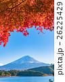 紅葉・富士山 26225429