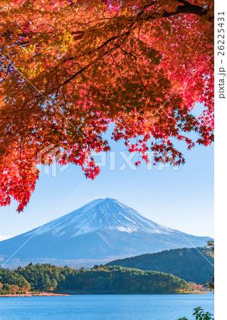 紅葉・富士山 26225431