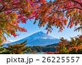 紅葉・富士山 26225557