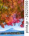 紅葉・富士山 26225560