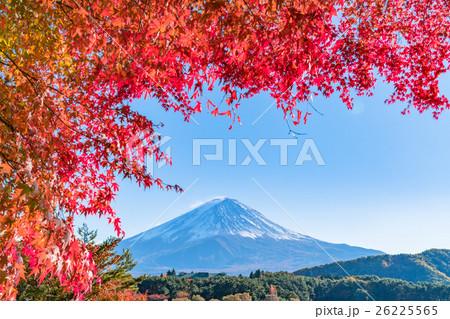 紅葉・富士山 26225565