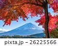 紅葉・富士山 26225566