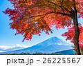 紅葉・富士山 26225567