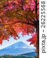 富士山 富士 紅葉の写真 26225568