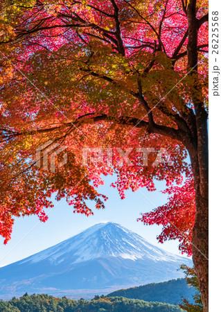 紅葉・富士山 26225568