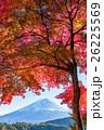 紅葉・富士山 26225569