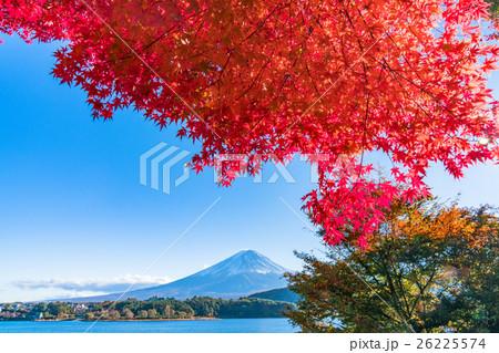 紅葉・富士山 26225574