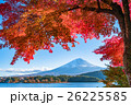 富士山 富士 紅葉の写真 26225585