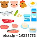 タンパク質を多く含む食品のイラストセット 26235753