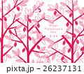 バレンタイン カカオ カカオの木のイラスト 26237131